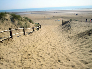 Camber Sands near Rye Bed and Breakfast