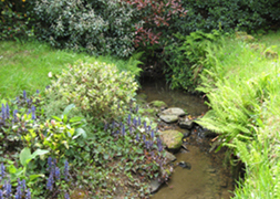 The stream at Stream House B&B