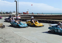 go karting in Hastings amusement park.